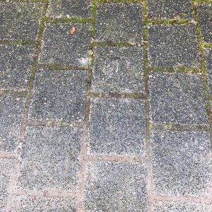natuursteen koperslakkeien